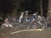 Black Day for Tesla ... 2 men killed in a Tesla car accident