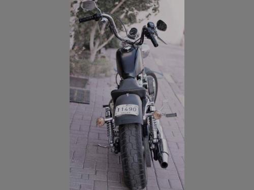 Harley Davidson... 2013
